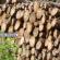 Fernando-Albrecht-afirma-que-o-efeito-estufa-e-problemas-climáticos-se-devem-ao-desmatamento-da-Floresta-Amazônica-no-seu-blog