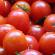Fernando Albrecht fala da venda de tomate cereja cheio de água