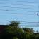 Imagem de grama em fios de energia elétrica