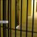 Corredor de uma prisão com grades em várias portas