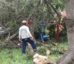 Fernando Albrecht fala do bom exmeplo da Riograndense disponibilizar mão de obra para ajuda no recolhimento de árvores derrubadas pelo temporal em Porto Alegre