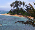 Praia de turismo no Havaí