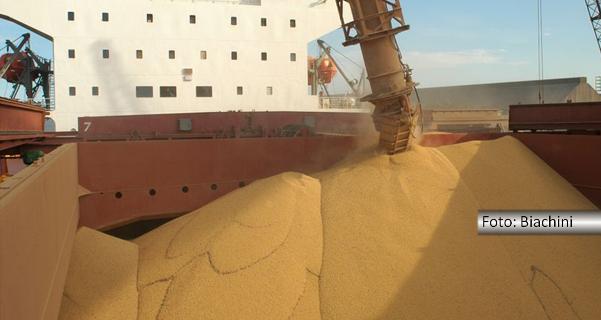 Fernando Albrecht fala sobre as exportações do agronegócio gaúcho