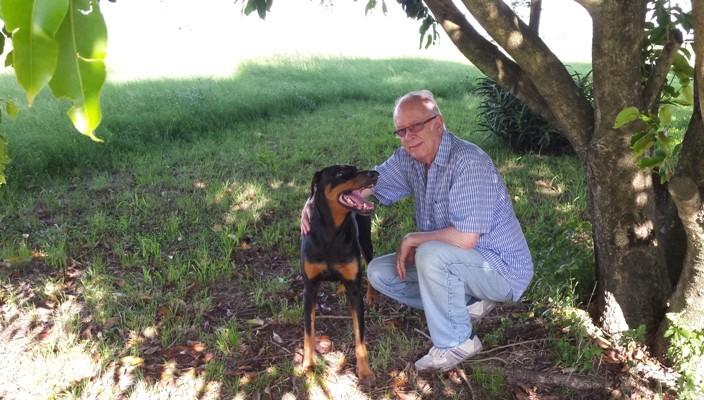 Cachorro dobermann chamado Thor do colunista Fernando Albrecht morre aos 10 anos