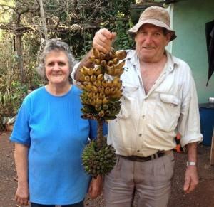 Casal de produtores com o cacho duplo de banana