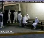 polícia federal divulga imagens da operação carne fraca