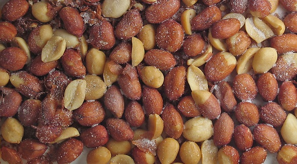 Fernando Albrecht conta o causo envolvendo amendoim e cerveja