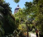 jardim palácio piratini foto Fernando Albrecht