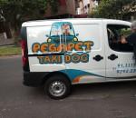 pega pet taxi para dogs
